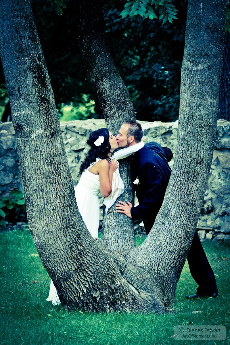 wedding_photography_margitsziget_kf4e6284-23